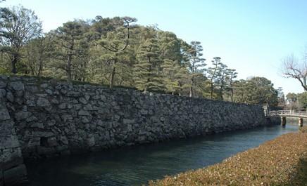 日本德岛(日本旅游)