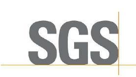 SGS彩世界标识 瑞士国际彩世界